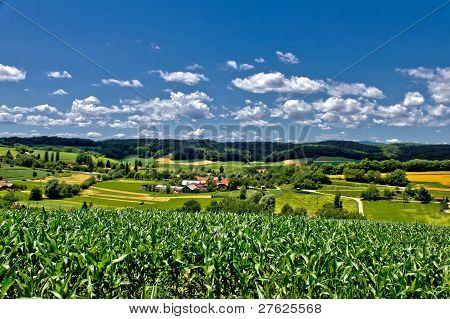 Beautiful Green Scenery Landscape In Spring Time Ii