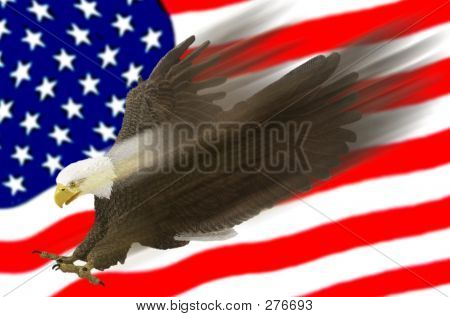Eagle Swoosh