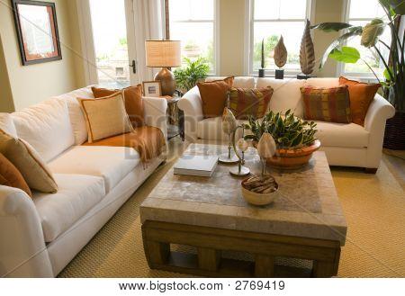 Luxury Living Room.