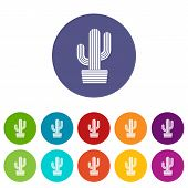 Tall Cactus Icon. Simple Illustration Of Tall Cactus Icon For Web poster