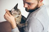 Close-up Of Beard Man With Cat, Lifestyle Portrait. Caring Man Is Holding A Devon Rex -tabby Cat, Bo poster