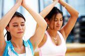 Постер, плакат: Девушки делают йоги