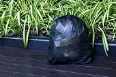 Plastic Waste Bag, Black Plastic Garbage Bag Placed On Wooden Floor, Bag Plastic Bagging Garbage poster