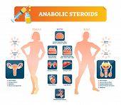 Anabolic Steroids Vector Illustration. Health Damage Symptoms Labeled Diagram. Forbidden Prescriptio poster