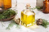 Cypress Essential Oil. Cypress Oil On Glass Bottle For Beauty, Skin Care, Wellness. Alternative Medi poster