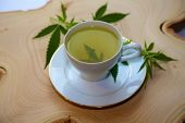 Medical Marijuana Tea. Hemp Tea. Cannabis Tea in a White Tea Cup with a Marijuana Leaf and Stem with poster