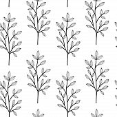 Black On White Herbs. Wild Flowers Vector Seamless Pattern. Endless Pattern For Wallpaper, Pattern F poster
