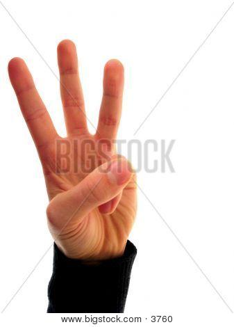 Finger Number 3
