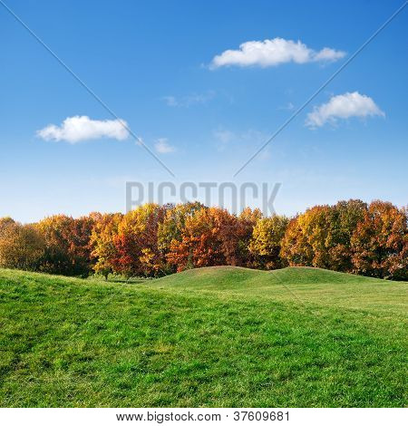 Green Lawn And Colorful Autumn Trees