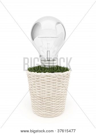 Light in flowerpot