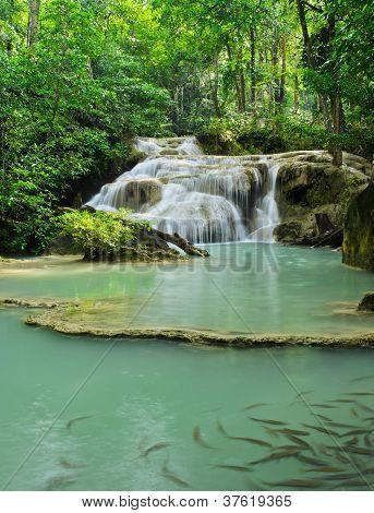 Cascading Falls
