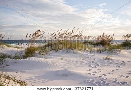 Footprints In The Dunes At Sunset