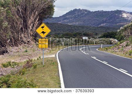 Australian, road trip