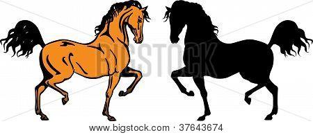 Arabian Horses Yellow And Black