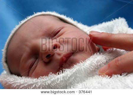 Nacido nuevo