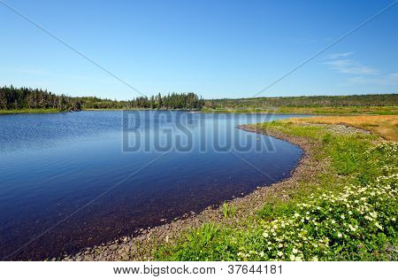 Coastal Lagoon On A Summer Day