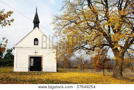autumnal view with chapel and lime tree