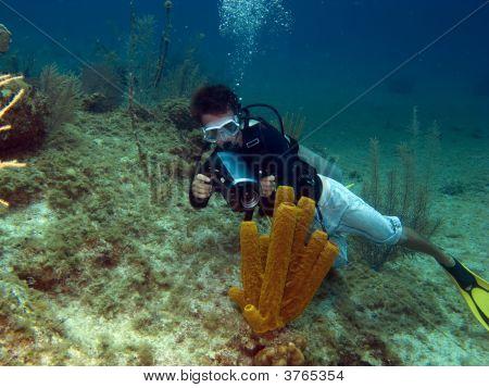 Underwater Videographer Shooting A Tube Sponge