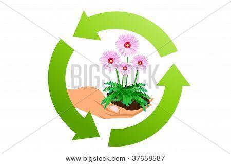 Ecology Concept Symbol