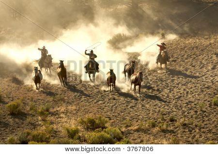 Three Cowboys Rounding Up Horses