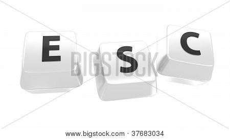 Esc Written In Black On White Computer Keys. 3D Illustration. Isolated Background.