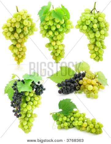 Collection Of Isolated Grape Clusters With Green Leafs