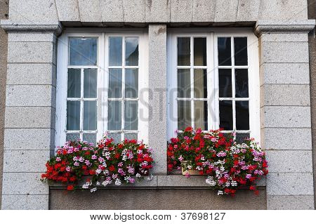 Gorron - Windows And Flowers