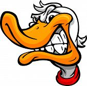 Duck Or Mallard Head Vector Cartoon