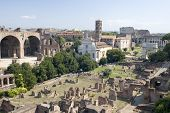 Roman Forum And Coliseum