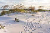 image of footprints sand  - Sunset at Pensacola Beach in Florida - JPG