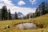 Постер, плакат: Яловец пик в национальном парке Джулиан Альпах Словении