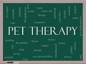 picture of brighten  - Pet Therapy Word Cloud Concept on a Blackboard with great terms such as dog cat companion people loving and more - JPG