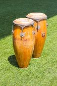 pic of congas  - Congas in the grass field - JPG