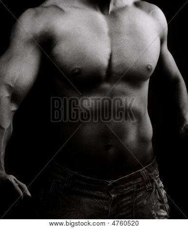 Artistic Image Of Muscular Male Body