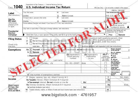 Federal Tax Return Audit