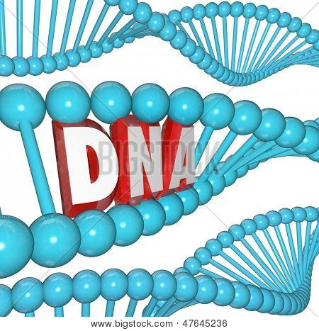 A strand of DNA with the letters or word within it to illustrate genetics, heredity and medical research