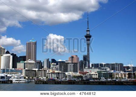 Auckland City Scape