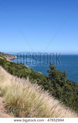 Shoreline Along Indian Ocean