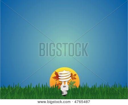 Go Green Light Cfl Bulb
