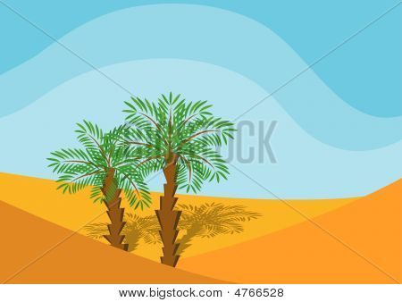 Two Palm-trees In A Desert