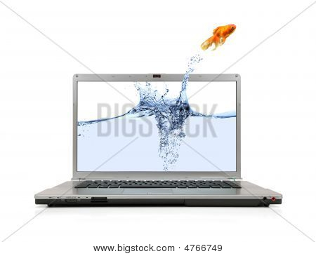 Goldfish Jumping Out Of Laptop