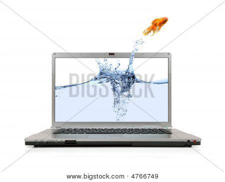 Goldfisch springen Laptop