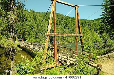 Forest Walking Bridge