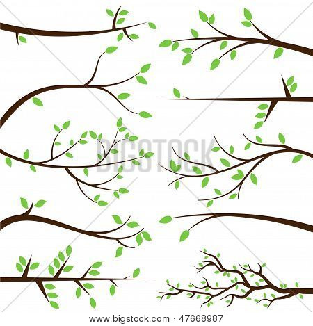 Vector collectie van Tree Branch silhouetten