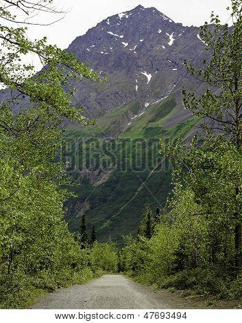 Caminhadas no Alasca