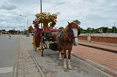 foto of hackney  - Traditional  carriage on the road in Lampang Thailand - JPG