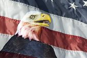 foto of boy scout  - Head of eagle superimposed into flag can be used as background with eagle scout or other photo - JPG