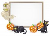 stock photo of witches  - Halloween sign or banner with orange Halloween pumpkins and black witch - JPG