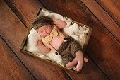 foto of wooden crate  - Ten day old newborn baby boy in a little man suit sleeping on his back in an old wooden crate lined with frayed burlap - JPG