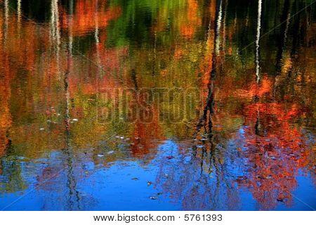 Herbst Überlegungen